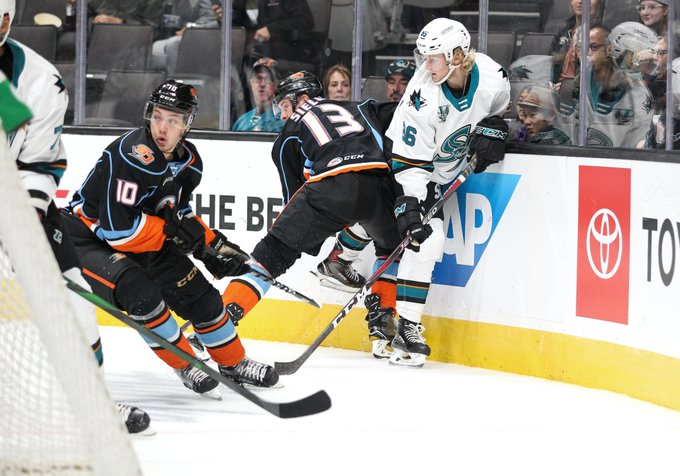 American Hockey League Anaheim Ducks