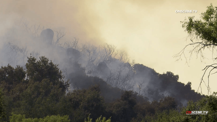 Smoke and flames are seen in Valley Center vegetation at Miller Fire.