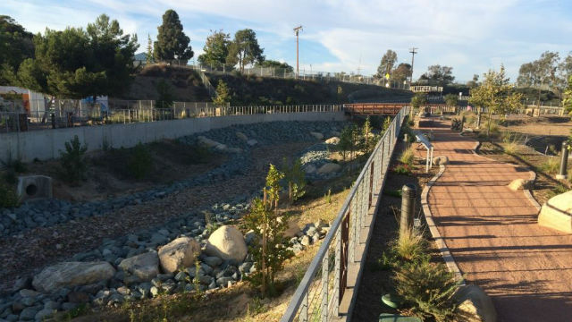 Previously restored section of Chollas Creek