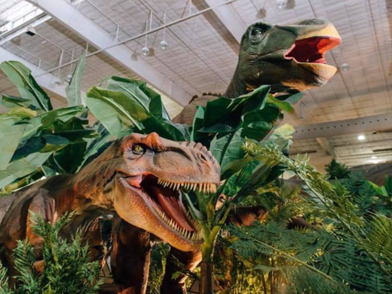 Del Mar Fairgrounds Dinosaurs Festivals