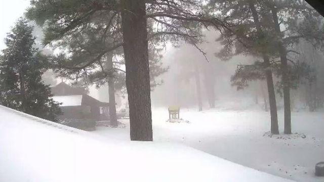 Snow on Mount Laguna