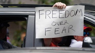 """Handmade signs were frequently displayed by car occupants supporting the """"freedom rally."""""""