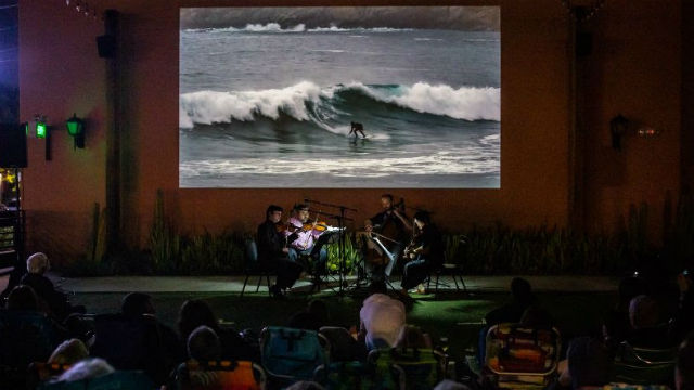 """Virtual """"Sounds and Swells"""" concert"""