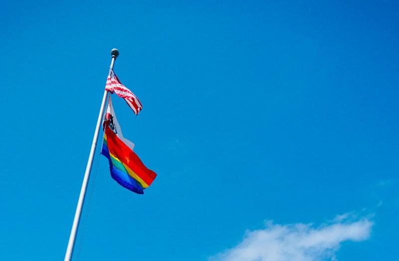 LGBTQ Activism Gay Lesbian