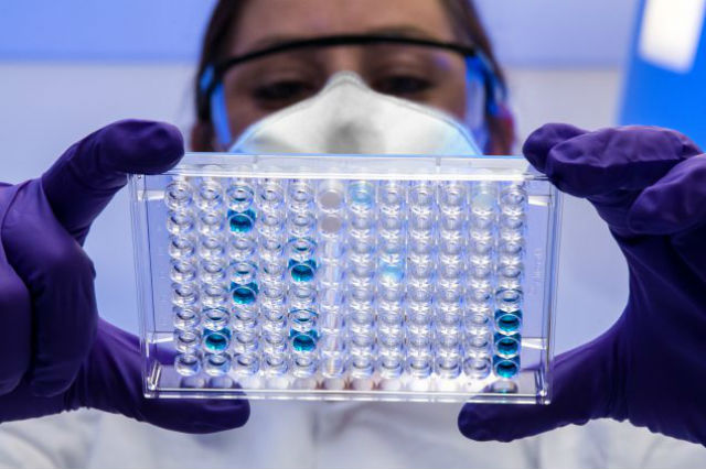 Antibody test assay