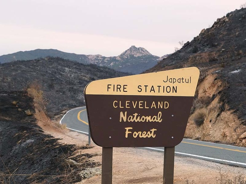 The Valley Fire jumped Japatul Road in many areas in the