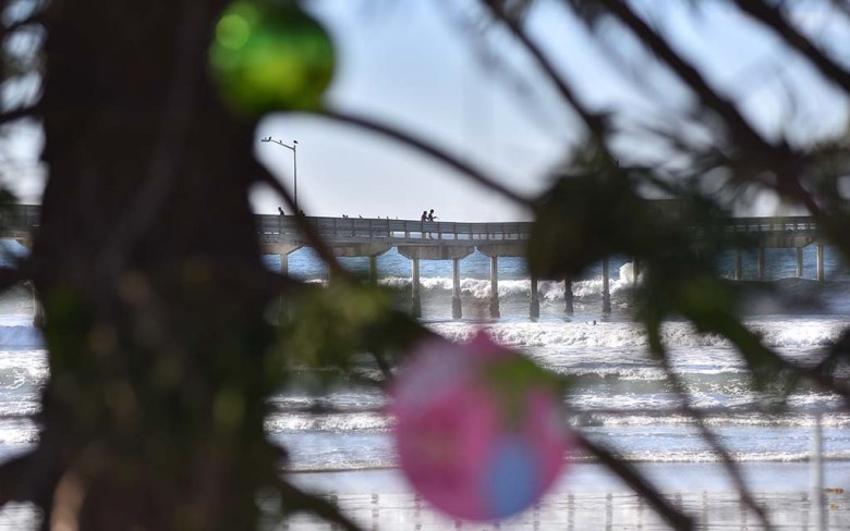 People stroll on the Ocean Beach Pier as this year's Christmas tree overlooks the beach.
