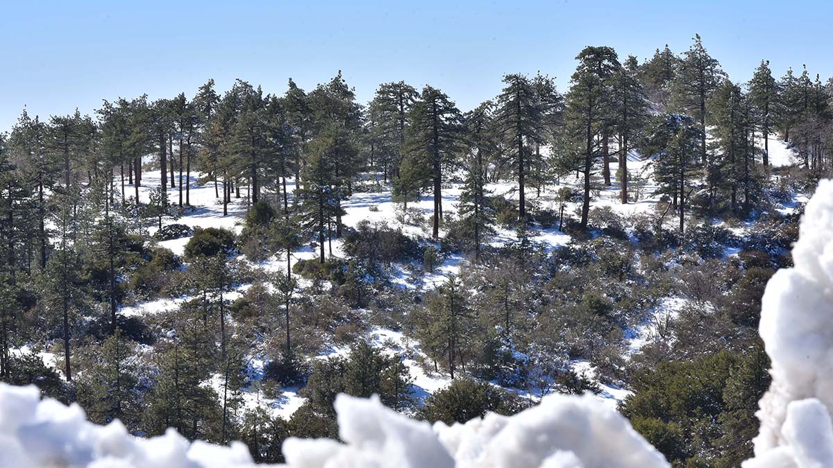 Two recent storms added to the snow totals at Mt. Laguna, with more snow projected for Thursday night through Friday night.