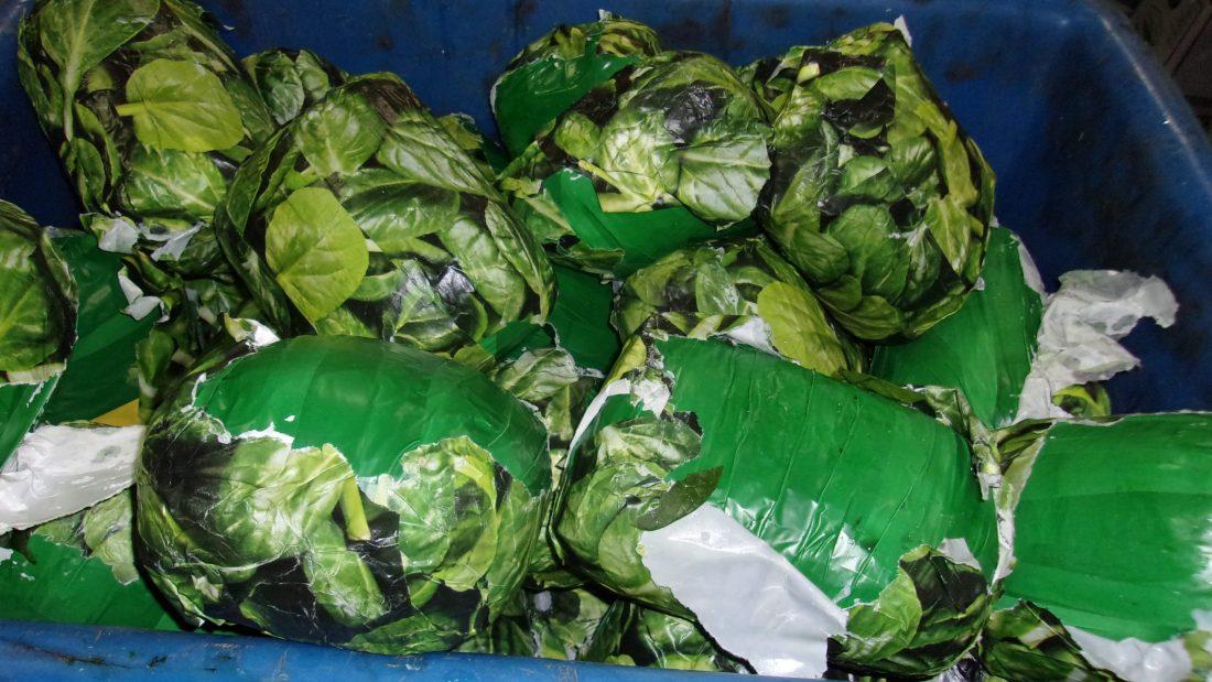 Met disguised as fresh spinach