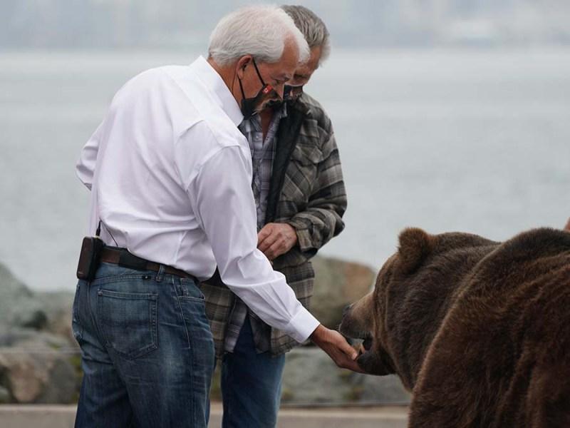 San Diegan John Cox gives a biscuit treat to Tag, the 1,000-pound Kodiak bear.