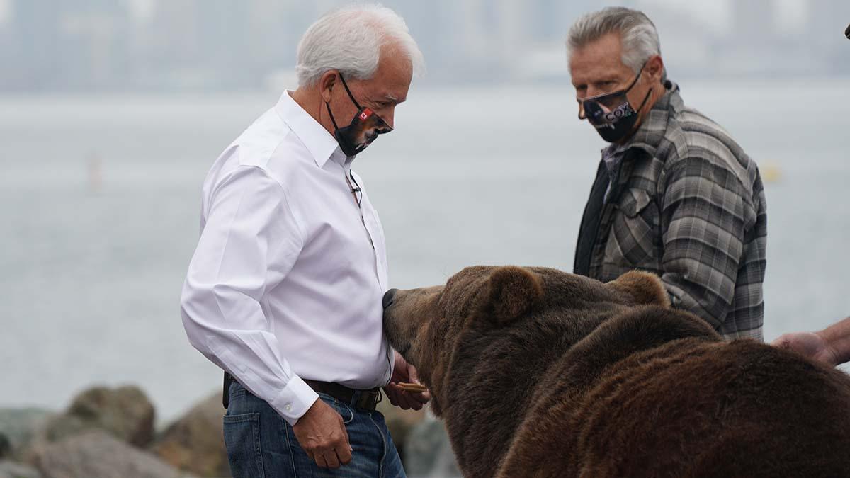 Tag, a Kodiak bear, nuzzles gubernatorial candidate John Cox before a press conference.