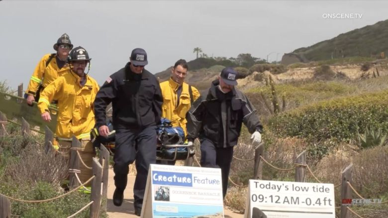 Point Loma Boat Accident