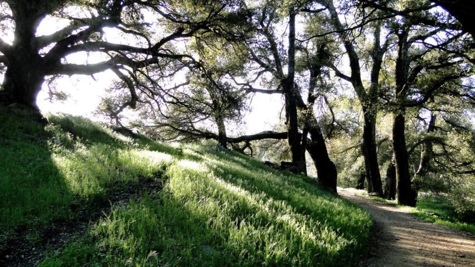 Parks Recreation San Diego County