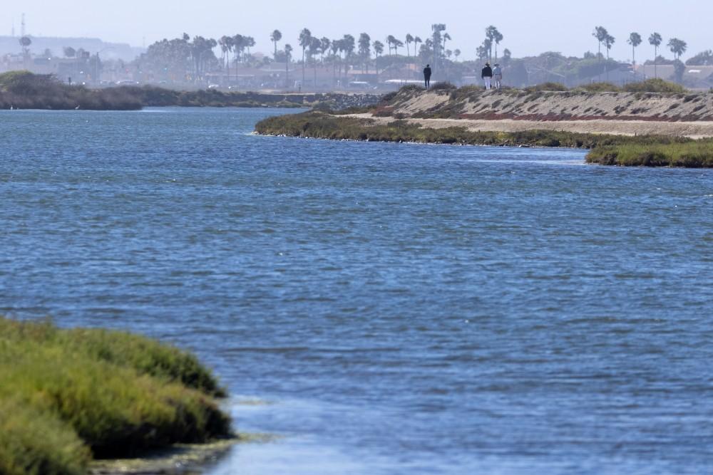Bolsa Chica Wetlands