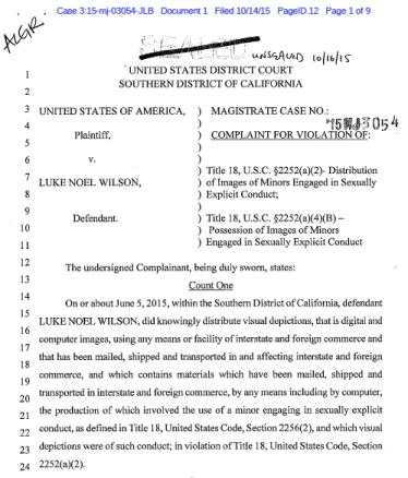Original federal charges against Luke Wilson in San Diego. (