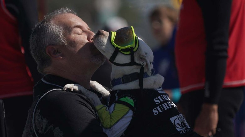 James Wall shows his affection for Faith, an American pit bull terrier, before a heat. Photo by Chris Stone