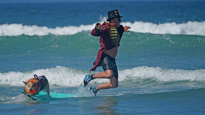 Homer Henard leaps off a surfboard after riding with Skyler, a red heeler. Photo by Chris Stone