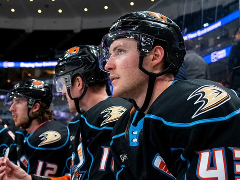 American Hockey League Ducks