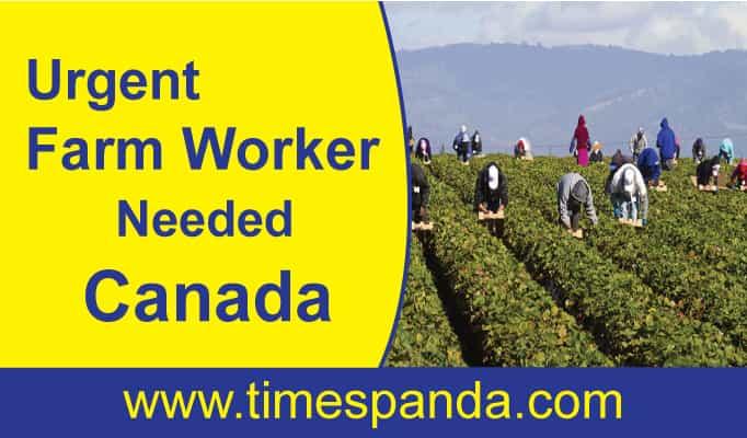 Urgent #Farm #Worker Needed #Canada
