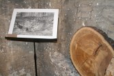Lead Mining Rake, Circa 1700-1877, Stockhill Forest, Grid Ref ST 551513