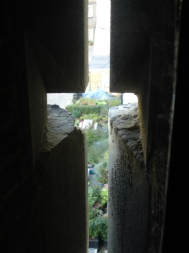 Tower of London - as I was touring one of the buildings, I peeked out this window and found a small garden. From the ground/outside of the building, I couldn't find a way to actually access the garden, but I loved this image.