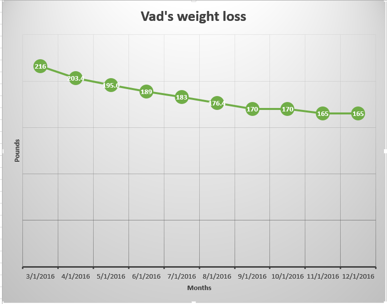 Weight Loss Progress Visualized The Time Machine Diet