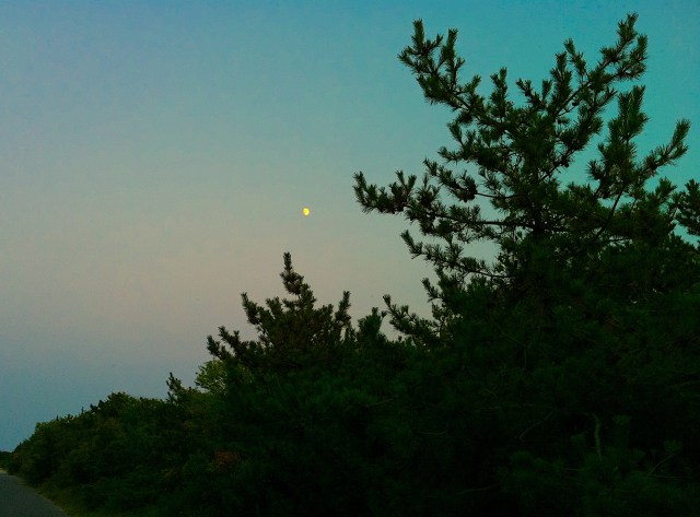 Twilight in Cape May