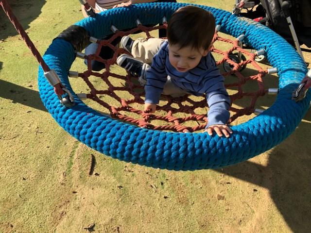 A playground in a safari