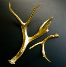 Gilded Antlers (Au Gilding)