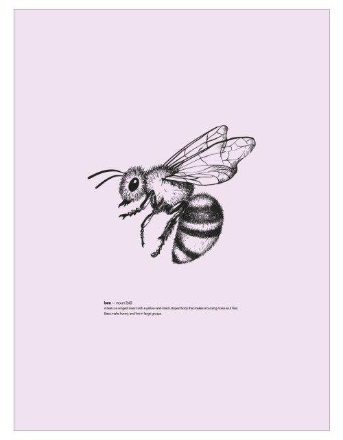timhenning-bee-II-30x40cm-rose