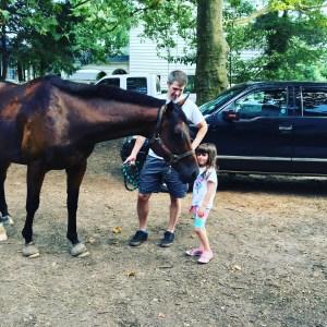 Horse husband holds horse