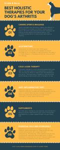 Dog Arthritis Infographic