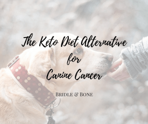 Keto Diet for Canine Cancer