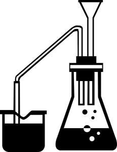 Essential Oil Steam distillation