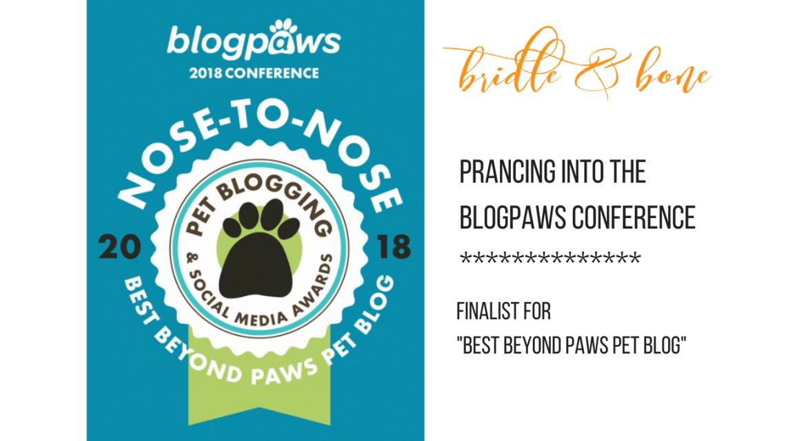 BlogPaws Finalist 2018