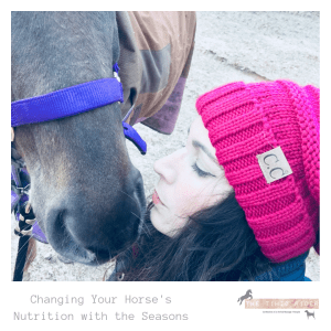 Changing Your Horse's Nutrition with the Seasons