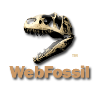 The Original WebFossil®