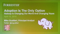 adoption is the only option hadoop