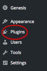 install wordpress plugin
