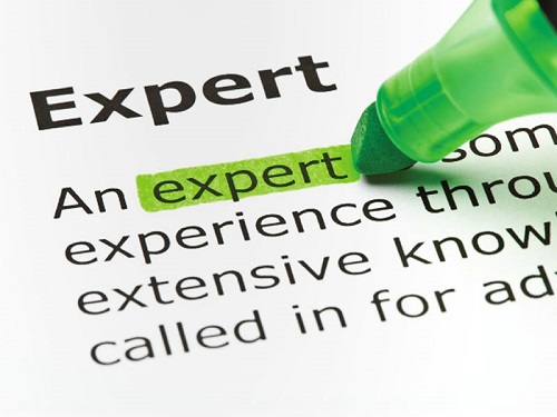 expert witnesses, Timothy Dimoff