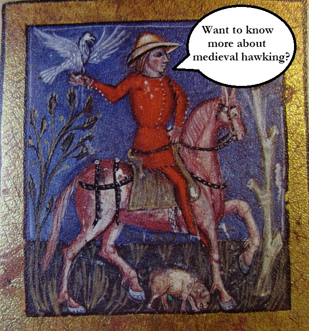 Medieval Hawking & Falconry: Hunting with Peregrines in the Middle Ages