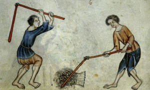 medieval serf peasant and slave differences