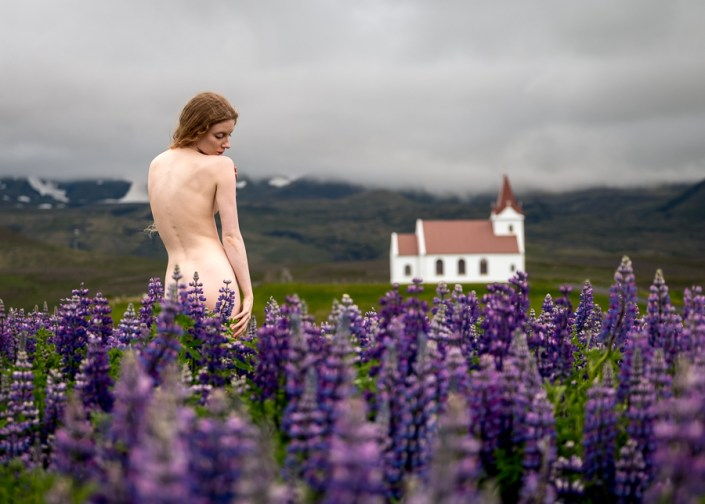 Mountains, Geothermal, Lupins, Lulu - It Must Be Iceland!