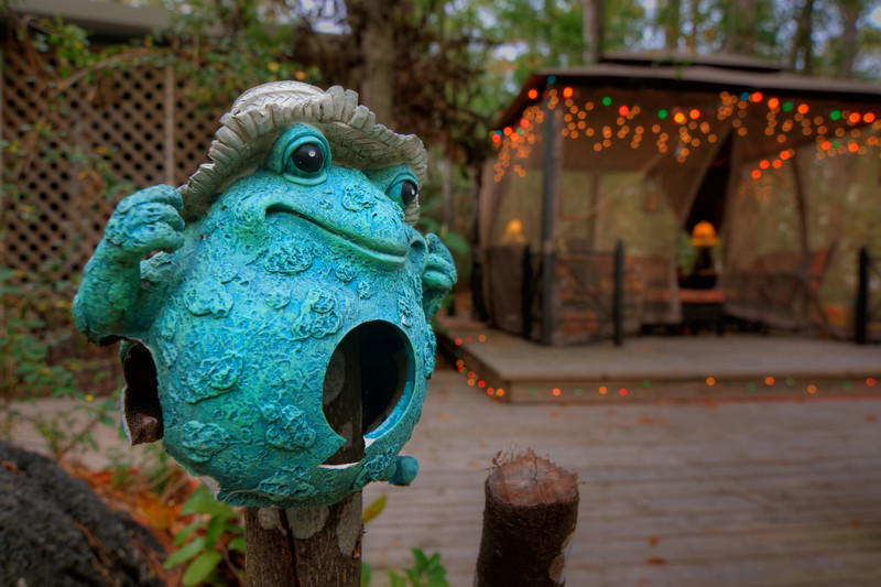 I'm not a big frog fan, real or otherwise, except for maybe Kermit. My friends have this little guy (or girl?) on a post in their backyard. Their backyard is full of little surprises like this with ornaments in trees, a stone alligator in the grass and other yard art to stir the imagination. Photo by Tim Stanley Photography.