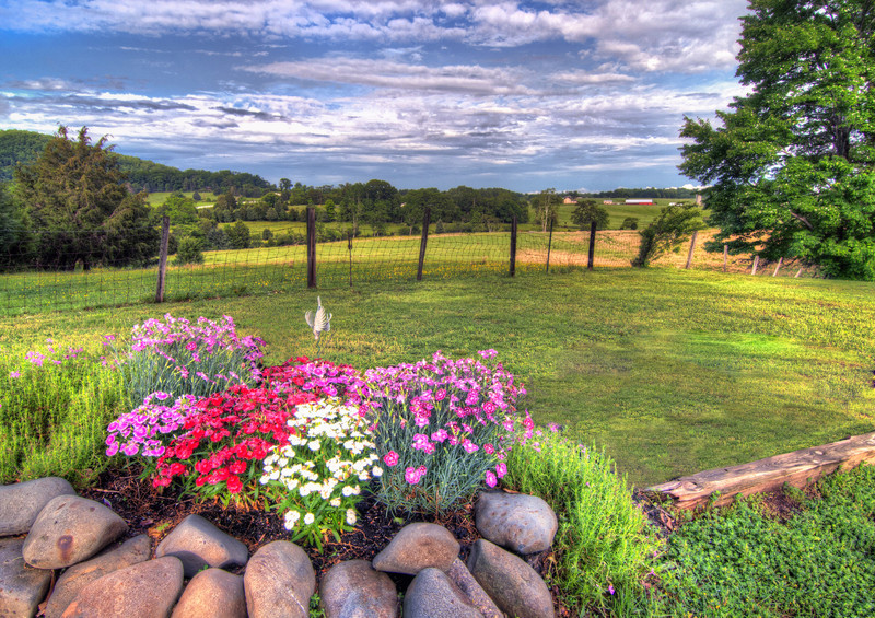 Like the Blue Ridge Mountains need any help to look any prettier, this small flowerbed does make a nice foreground looking out from my aunt's backyard.  PH=hoto by Tim Stanley Photography.