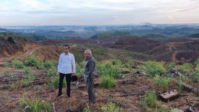 Photo of Belum Ada Proyek Pembangunan Ibukota