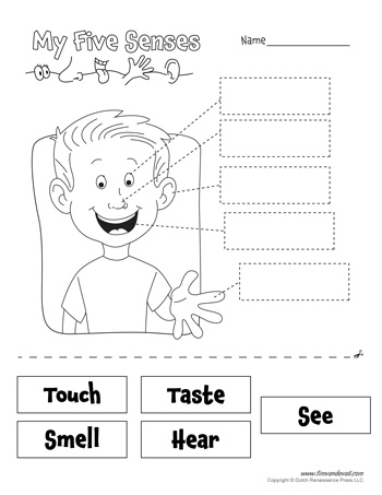 Five Senses Worksheet - Black and White