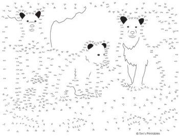 Bear Dot-to-Dot