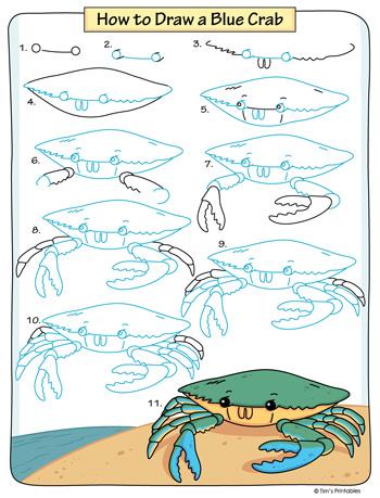 Blue Crab Drawing Tutorial PDF