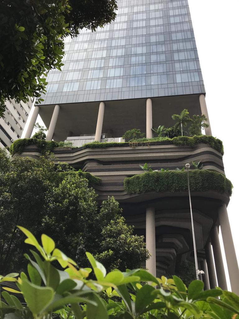 Groen Singapore